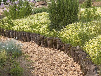 Bordaduras de jardim perfeitas for Arbustos decorativos para jardin