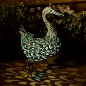 Animal Decorativo Luminoso - Pato