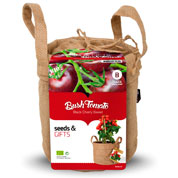 Kit de Cultura Tomates 'Black Cherry'